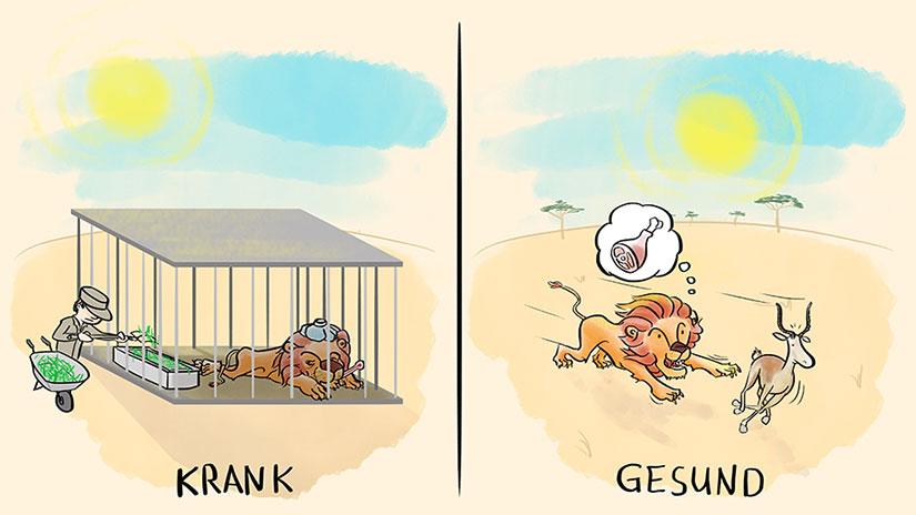 Die Löwengeschichte
